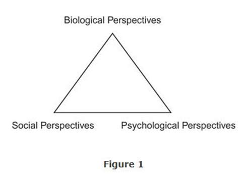 Case analysis and observation research methods